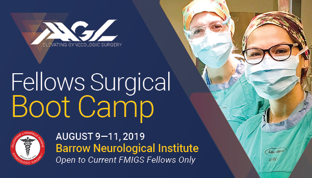 Two-Year Fellowship in MIGS » AAGL